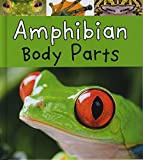 Amphibian Body Parts (Animal Body Parts)