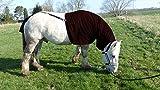Pferdehalsdecken Ekzemerdecke mit Schweifschutz (Shetty, Bordeaux)