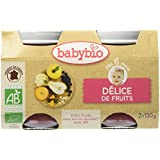Babybio Pots Délice de Fruits 260 g - Lot de 6