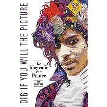 Dig if you will the picture: de biografie van Prince