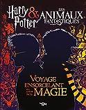 Harry Potter & Les animaux fantastiques : Voyage ensorcelant au coeur des films