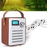 Zunate Radio,Mini tragbare DAB/DAB + FM Wi Fi Digitales Internetradio Bluetooth Kabellose Multifunktional Lautsprecher Mobiles DAB Digitalradio 87.5-108MHz?können 10 UKW und 10 DAB Kanäle speichern -