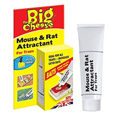 The Big Cheese Quick Click Mouse Traps : everything five pounds (or less!)