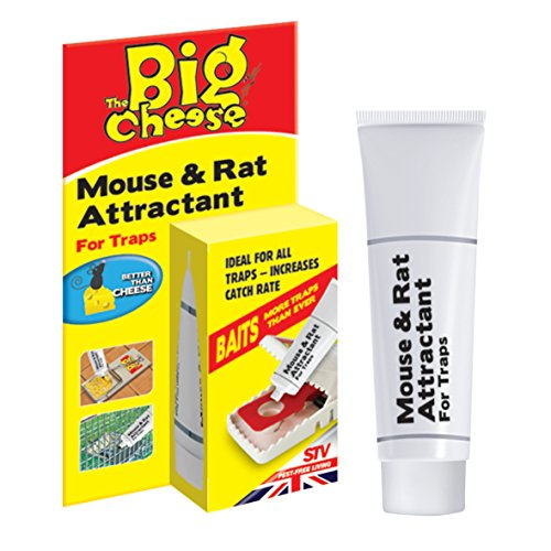 the-big-cheese-mouse-and-rat-attractant-natural-poison-free-bait-attracts-mice-and-rats-to-trap