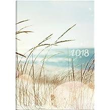 Brunnen 107311503 Taschenkalender Modell 731 15, 2 Seiten = 1 Woche, 100 x 140 mm, Grafik-Einband Strand, Kalendarium 2018