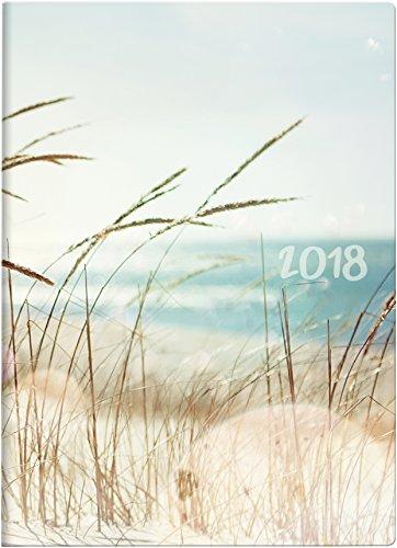 Preisvergleich Produktbild Brunnen 107311503 Taschenkalender Modell 731 15, 2 Seiten = 1 Woche, 100 x 140 mm, Grafik-Einband Strand, Kalendarium 2018