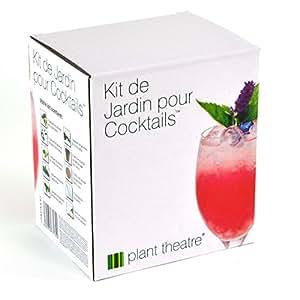 Il Kit Piante da Cocktail di Plant Theatre - 6 varietà da coltivare - Un fantastico regalo per gli amanti del giardinaggio che non disdegnano di farsi un bicchierino.