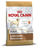 Royal Canin Adult Labrador Dog Food (12 Kg)