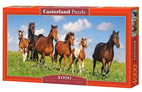 Castorland C-400034-2 - Paso Fino Herd, 4000-teilig, Klassische Puzzle