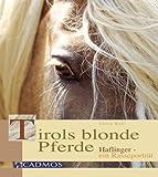 Tirols blonde Pferde: Haflinger ein Rasseporträt