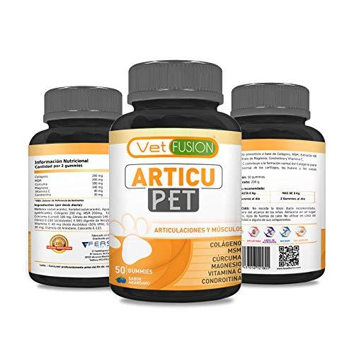 51ezayVaL5L - Antiinflamatorio Natural para Perros y Gatos | Colágeno + Cúrcuma + Condroitina + Magnesio + MSM + Vitamina C | Combate el dolor y la inflamación | Recupera su energía y movilidad | 50und. sin azúcar