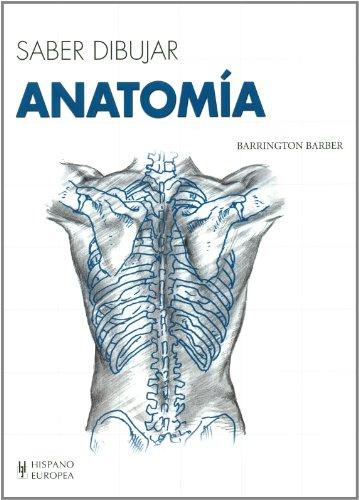 Anatomía, saber dibujar