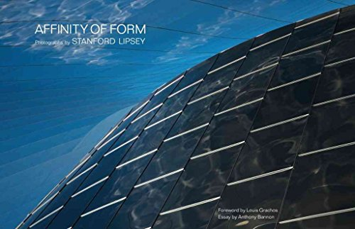 [(Affinity of Form)] [By (author) Stanford Lipsey] published on (July, 2009)