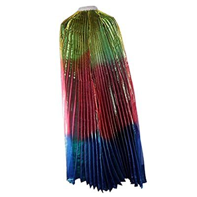 FNT Lady Shining Belly Dance Costume Rainbow Angel Belly Wing Dance Wear