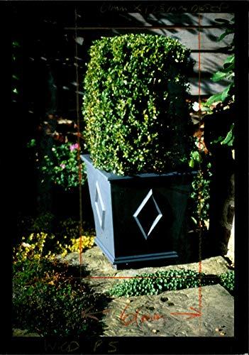 Self-watering Window Box (Fotomax Vintage Photo of The Self Watering Wooden Window Box.)