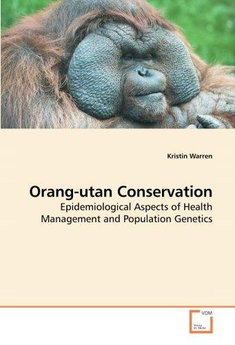 Orang-utan Conservation por Kristin Warren