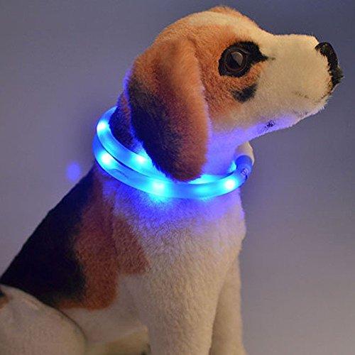 iEFiEL Hunde Leuchthalsband Universell Kürzbar LED Hundehalsband Leuchtband Leuchtschlauch Blink Hundehalsband 70cm, Aufladen per USB, 3 Modell Blink, Wasserdicht (One Size, Blau) - 2