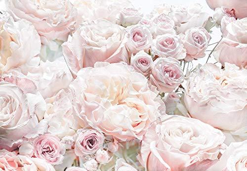 Komar Fototapete Spring Tapete, Wanddekoration, Rosen, Schlafzimmern, Romantik, Blumenmotiv-8-976,...