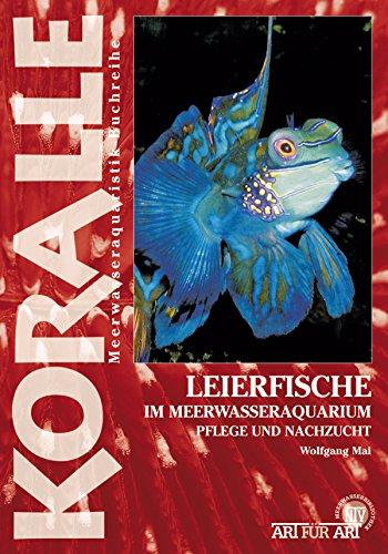 Leierfische im Meerwasseraquarium: Pflege und Nachzucht (Art für Art)