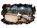 3D Wandtattoo Sport Skating Skateboard Skater Bild selbstklebend Wandbild sticker Wohnzimmer Wand Aufkleber 11H1030, Wandbild Größe F:ca. 140cmx82cm
