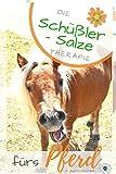 Schüßler Salze fürs Pferd: Die Schüßler Salze Therapie fürs Pferd - Wirkung, Anwendung und Dosierung