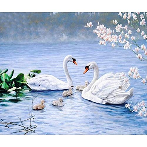 StrawBerrys DIY 5d Diamant malerei by Anzahl kit kristall Strass Stickerei kreuzstich Kunst Handwerk leinwand wanddekor (Swan)