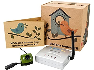 Green Feathers Wireless Bird Box Camera with Night Vision, Wireless Receiver, 700TVL Video and Audio - Perfect for your Garden, Titanium, Green, Nest Boxes, Bird Houses, Green Camera, Wide Angle Lens, Audio, 940nm Infrared by SpyCameraCCTV