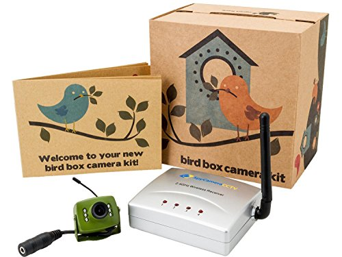 Green Feathers Wireless Bird Box Camera with Night Vision, Wireless Receiver, 700TVL Video and Audio – Perfect for your Garden, Titanium, Green, Nest Boxes, Bird Houses, Green Camera, Wide Angle Lens, Audio, 940nm Infrared