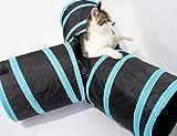 Prosper Pet Cat Tunnel chenci- klappbar 3Wege Play Spielzeug–Tube Fun für Kaninchen, Kätzchen, und Hunde - 4