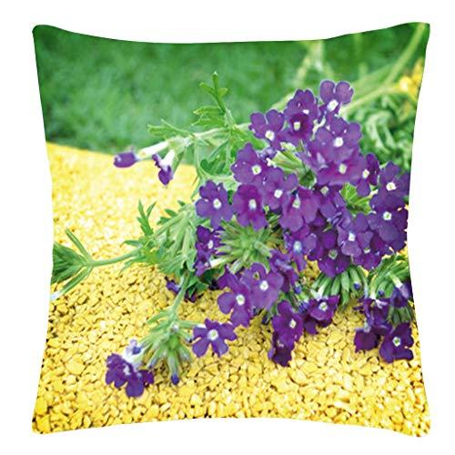 a Blume Caterpillar Gras Natur Szenerie Mustern Set Kissenbezüge 45x45 cm Qualitäts Kissenhüllen In Baumwolle -Optik Mit Für Sofa Auto Terrasse Zierkissenbezüge ()