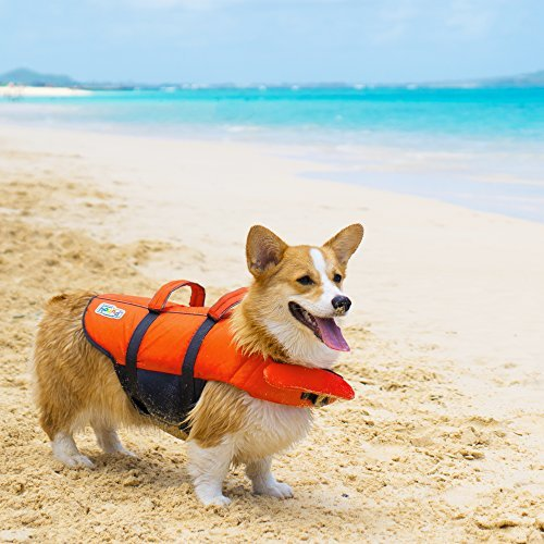 Kyjen 22019 Outward Hound Ripstop Quick Release Easy Fit Rettungsweste für Hunde, verstellbar, Größe S, orange - 5