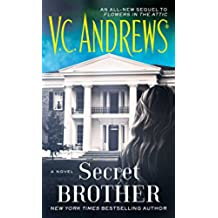 Secret Brother (The Diaries Series Book 3) (English Edition)