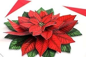 """Carte pop-up-/ 3 d-faltkarte: l'étoile de noel/cHRISTSTERN en pleine fleur-étui carte de couverture """"rouge"""