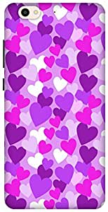 The Racoon Grip printed designer hard back mobile phone case cover for Gionee S6. (Purple Hea)