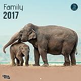 Nouvelles Images Calendrier 2017 Family 16 mois 29 x 29 cm...