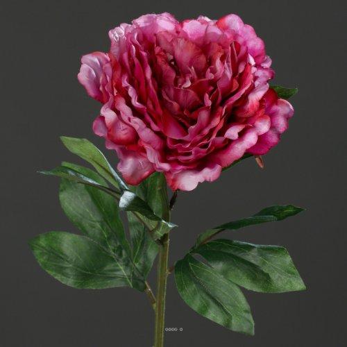 Artificielles - Pivoine Rose Fushia h 63 cm Tres Belle Tete - Choisissez Votre Couleur: Rose Fuchsia