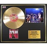 Pearl Jam/marco Disco de Oro/Vinilo, fotos y libro/Edición limitada/certificado de Authenticite/Ten
