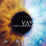 VAST (Visual Audio Sensory Theater) Self Titled 2x LP Vinyl Australian Import 180 gram Limited Edition #/1000