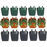 Minerva Naturals Vertical Pot (Set Of 15 - 3 Colors )Green:Brown