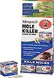 Motomco Mole Killer Grub Formula - Best Reviews Guide