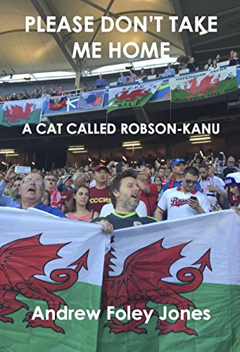 please-dont-take-me-home-a-cat-called-robson-kanu