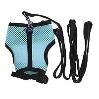 ZOOMY Adjustable Pet Mesh Harness Leash Walk Lead Vest Collars for Small Animal Hamster Rabbit Ferret Guinea Pig - Sky Blue S