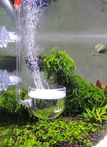 Musik Glas CO2 Diffusor für Aquarium Pflanze (Φ40mm)