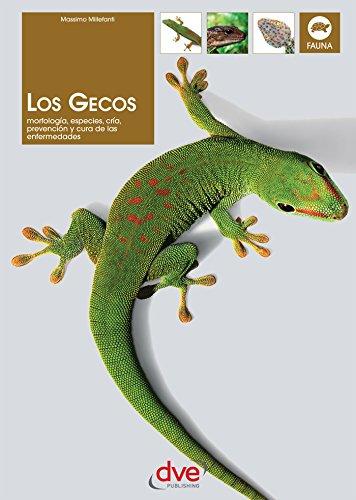 Descargar Libro Los gecos de Massimo Millefanti