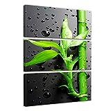 Bilderdepot24 Kunstdruck - Frischer Bambus II - Bild auf Leinwand - 60x90 cm dreiteilig - Leinwandbilder - Bilder als Leinwanddruck - Wandbild