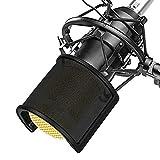 Microphone Filtre Anti Pop, TAIKUU Mic Filtre Micphone Ecran Anti Vent Avec...