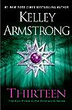 Thirteen: A Novel (An Otherworld Novel)
