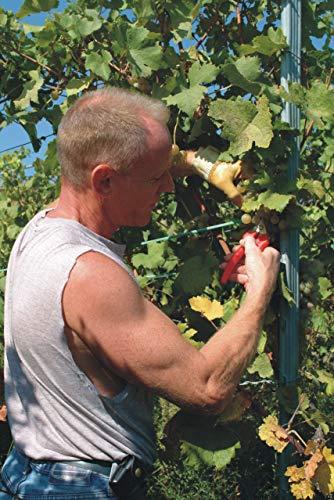 Felco Gartenschere Felco 310 mit Edelstahlklinge - 4