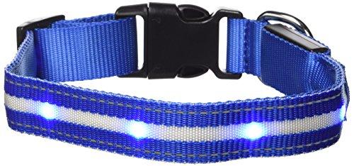 GoDoggie-GLOW - USB Wiederaufladbares LED Sicherheits- Hundehalsband / Hundeleuchthalsband - Super-Hell LED Leuchtet & Blinkt - Einstiegsangebot - Aufladen durch Verbinden mit elektronischen Geräten - Ganz ohne Batterien - Großer Spaß - Blau M.