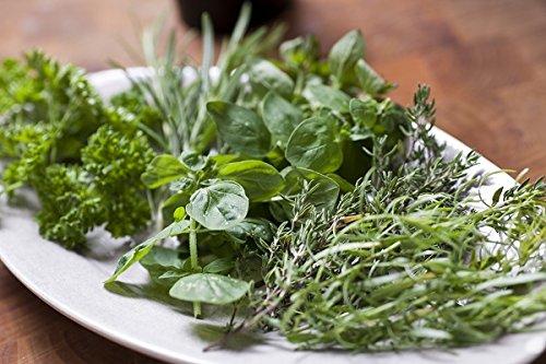 Cuisine aromatique - mélange d'herbes -
